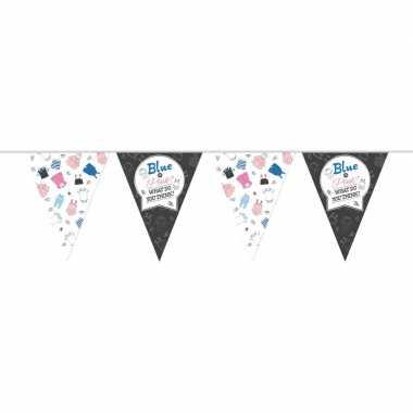 Vlaggenlijn gender reveal party/feest slinger 10 meter