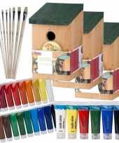 10x stuks houten vogelhuisje nestkastje 22 cm zelf schilderen pakket verf kwasten 10277416