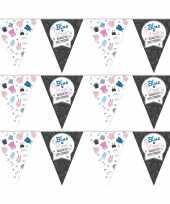 3x vlaggenlijnen gender reveal party feest slingers 10 meter