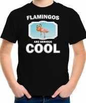 Dieren flamingo t-shirt zwart kinderen flamingos are cool shirt jongens en meisjes