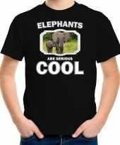Dieren olifant met kalf t-shirt zwart kinderen elephants are cool shirt jongens en meisjes