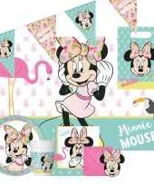 Disney minnie mouse kinderfeestje feestpakket 6 12 personen