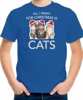 Kitten kerst t-shirt outfit all i want for christmas is cats blauw voor kinderen