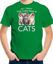 Kitten kerst t-shirt outfit all i want for christmas is cats groen voor kinderen