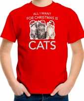 Kitten kerst t-shirt outfit all i want for christmas is cats rood voor kinderen
