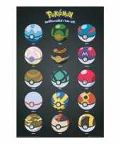 Pokemon poster pokeballs