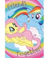 Poster my little pony 61 x 91 cm