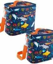 Set van 2x stuks kleine koeltassen voor lunch oranje blauw met oceaan print 9 x 22 x 22 cm 4 liter