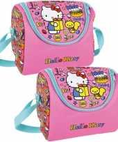 Set van 2x stuks kleine koeltassen voor lunch roze met hello kitty print 22 x 18 x 13 cm 5 liter