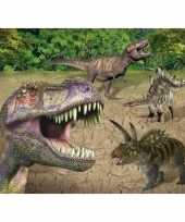 Set van 6x stuks placemats dinosaurussen 3d print 30 x 40 cm